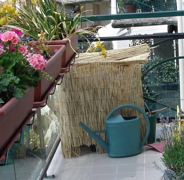 Lombricomposteur protégé de la chaleur par de la paille, geraniums et narcisses