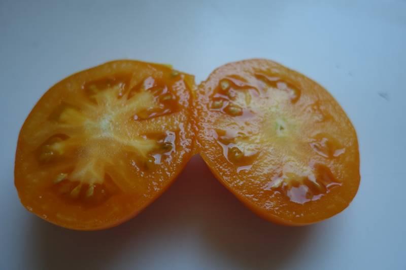 Tomate caro-rich (riche en bêta carotène) coupée en deux, elle est aussi belle que bonne !