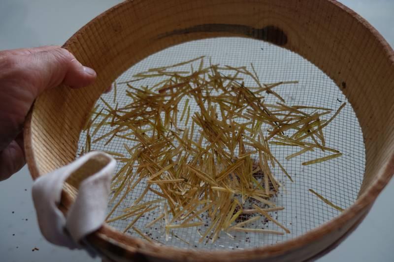 Le tamis permet de séparer facilement les graines des cosses