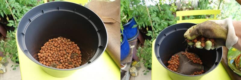 On remplit ensuite le fonds du pot avec 1 à 2 cm d'épaisseur de billes d'argile
