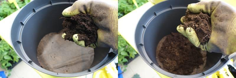 On rajoute ensuite du terreau (à gauche) et du lombricompost (à droite), en quantité équivalentes (si l'on veut un substrat plus riche (par exemple pour des tomates), il faut augmenter la quantité de lombricompost)