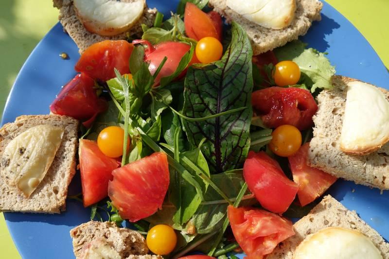 En plus des légumes précédents j'ai rajouté une tomate evergreen (qui est bien rouge !) et des tomates gold nugget